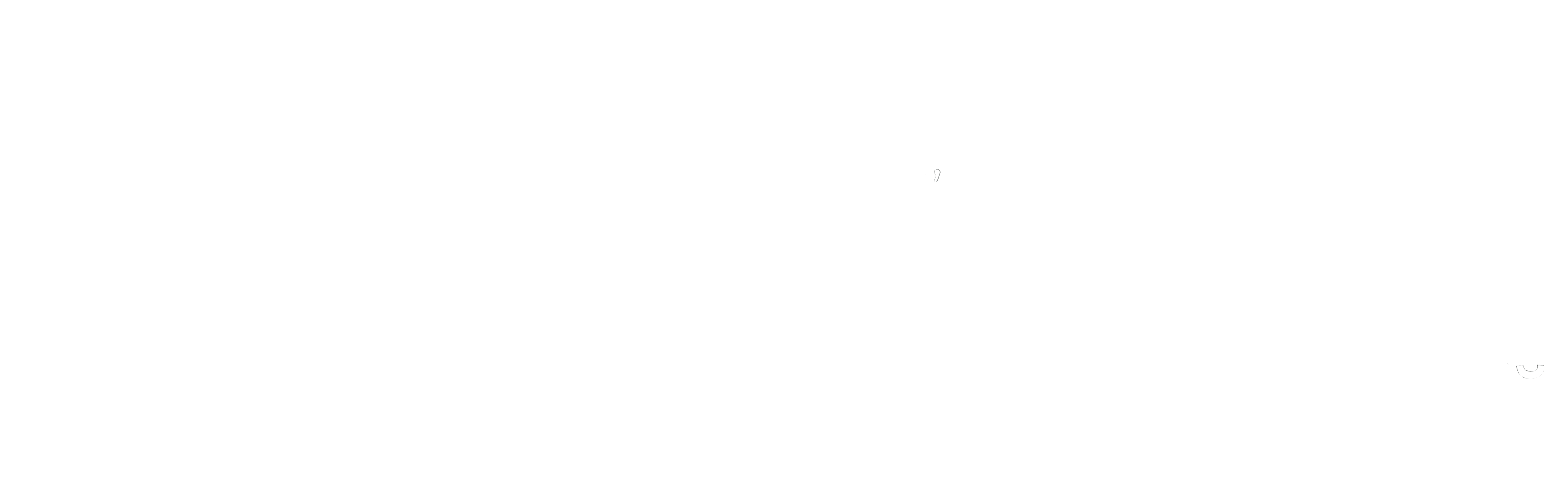 Logo asociatia metodelor alternative de integrare sociala