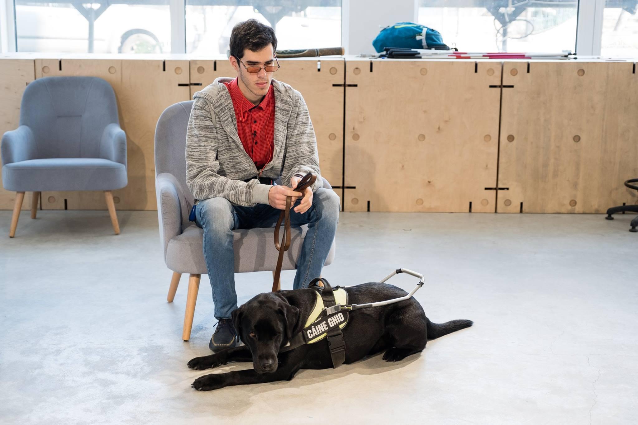 Descriere foto: Paul la inceputul atelierului, stand pe scaun cu Phantom culcat langa el.